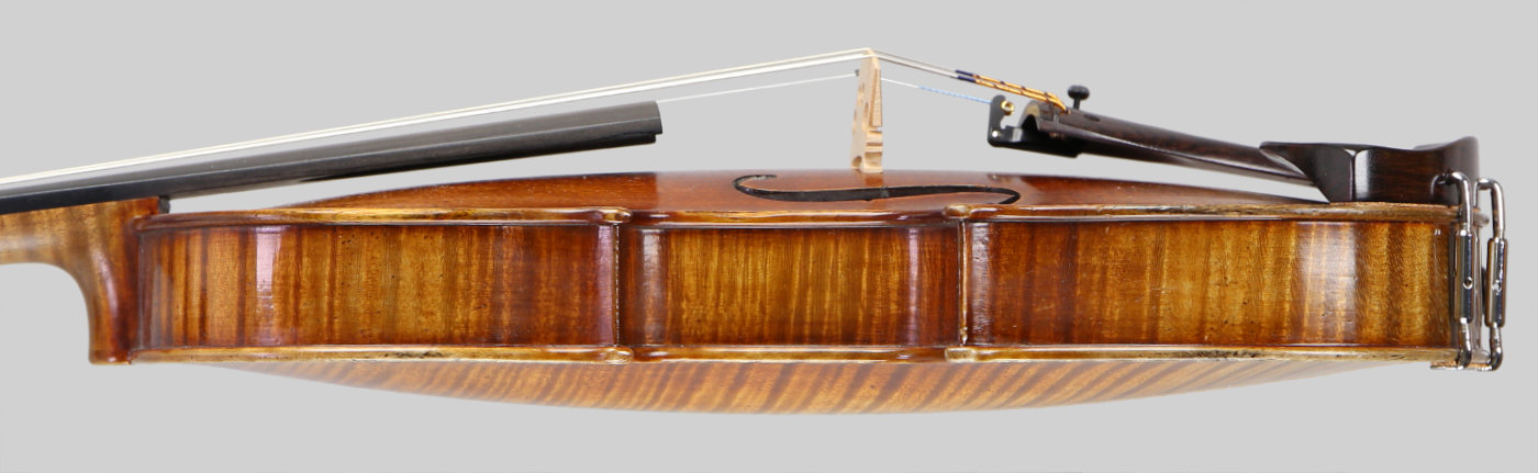 Violin side view